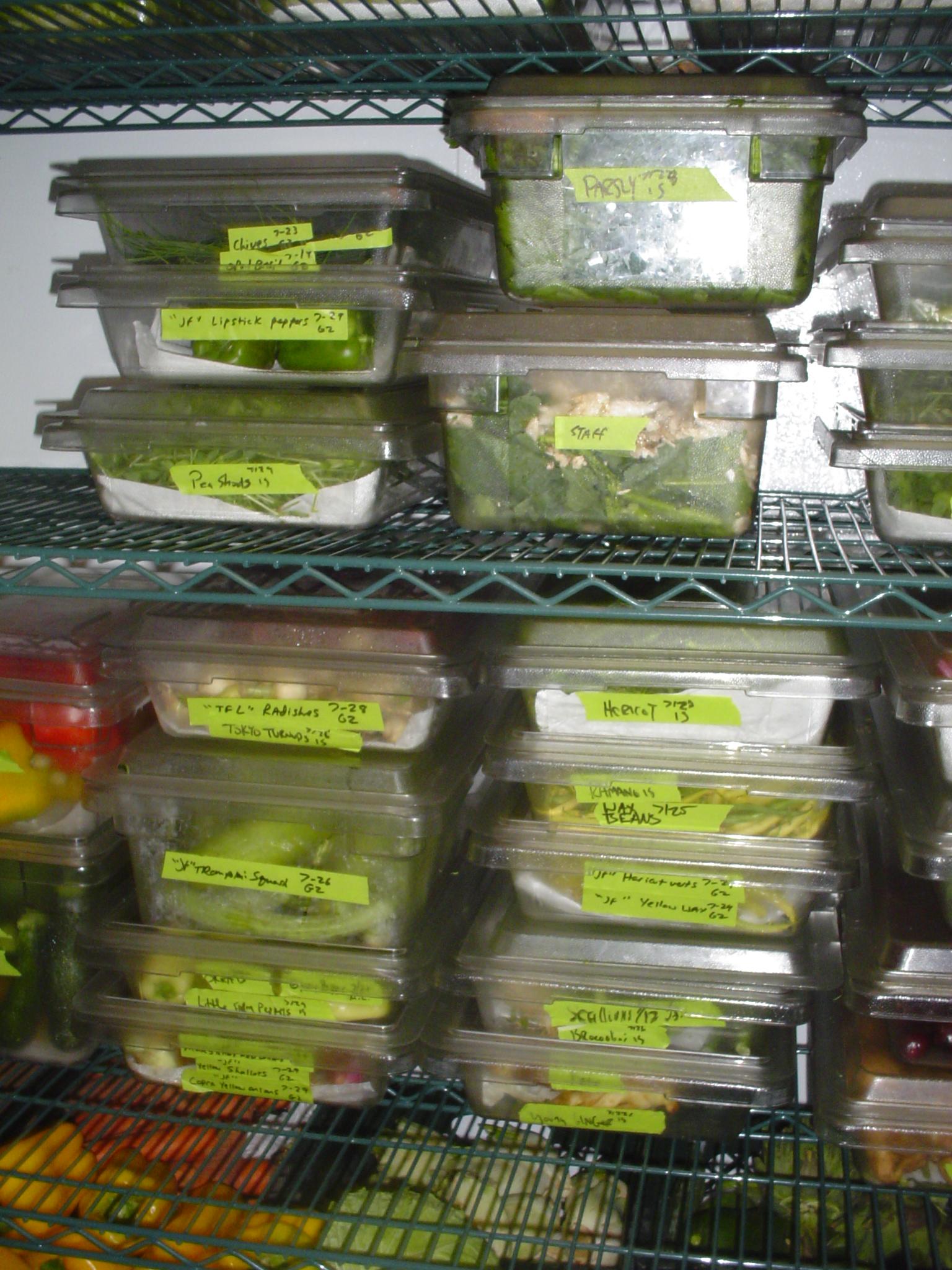 Vegetable Storage & Handling -