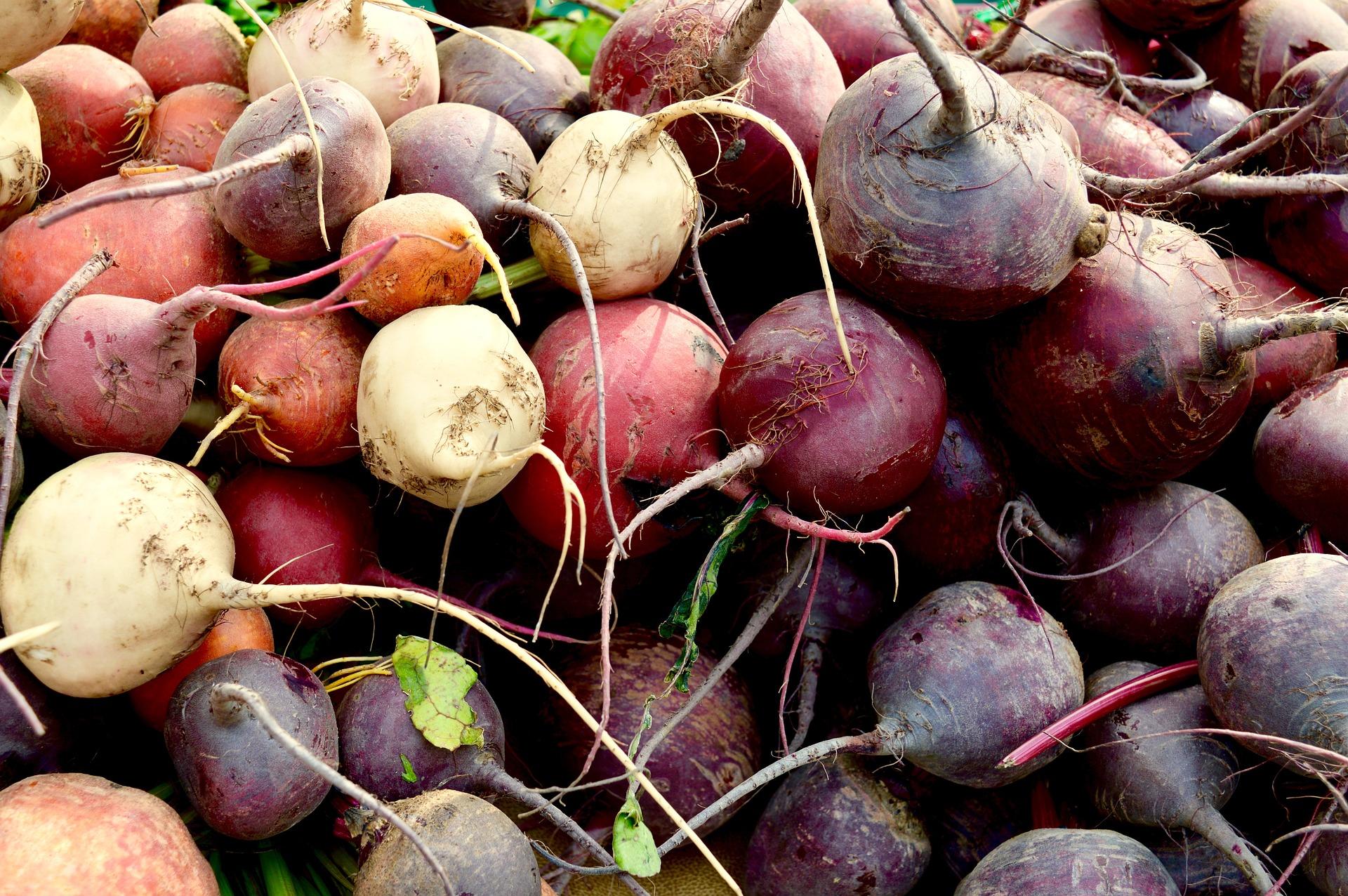 Root & Tuber Vegetables -