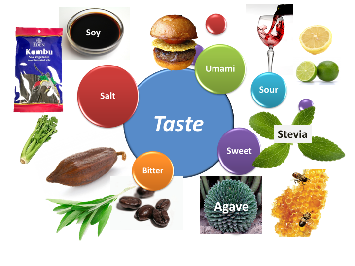 Taste & Seasoning - How To Create Great Tasting Food