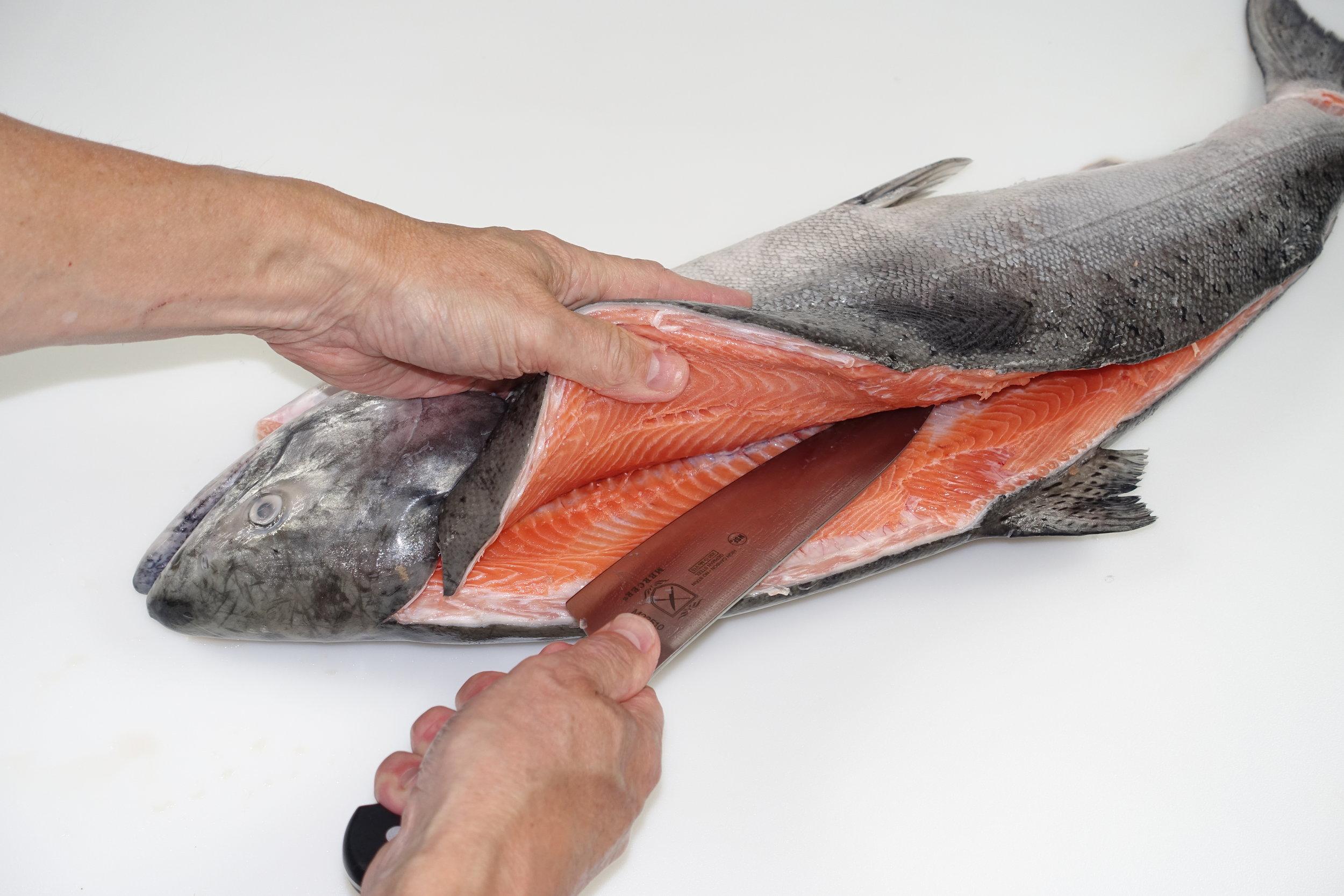 Fish & Shellfish Fabrication -