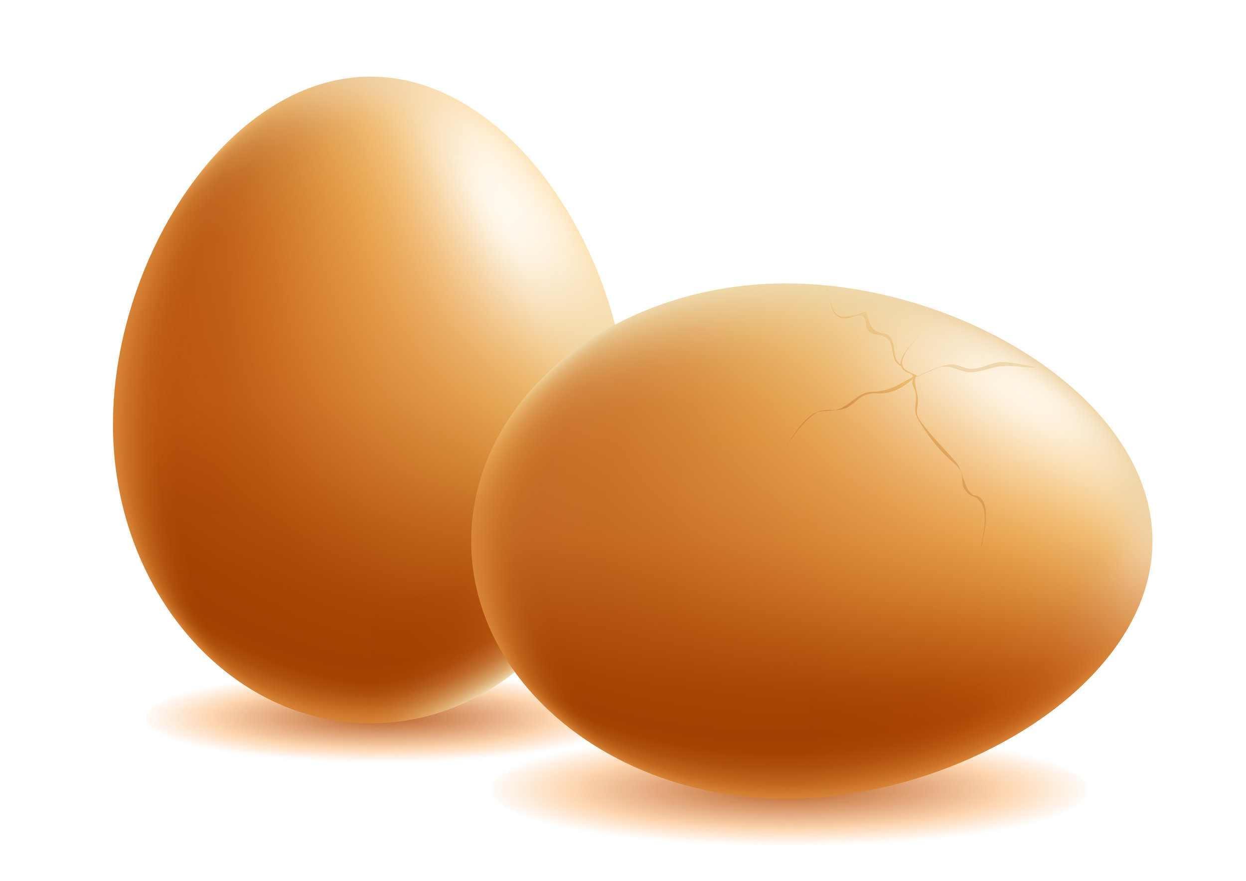 Click Here to Learn More About Eggs