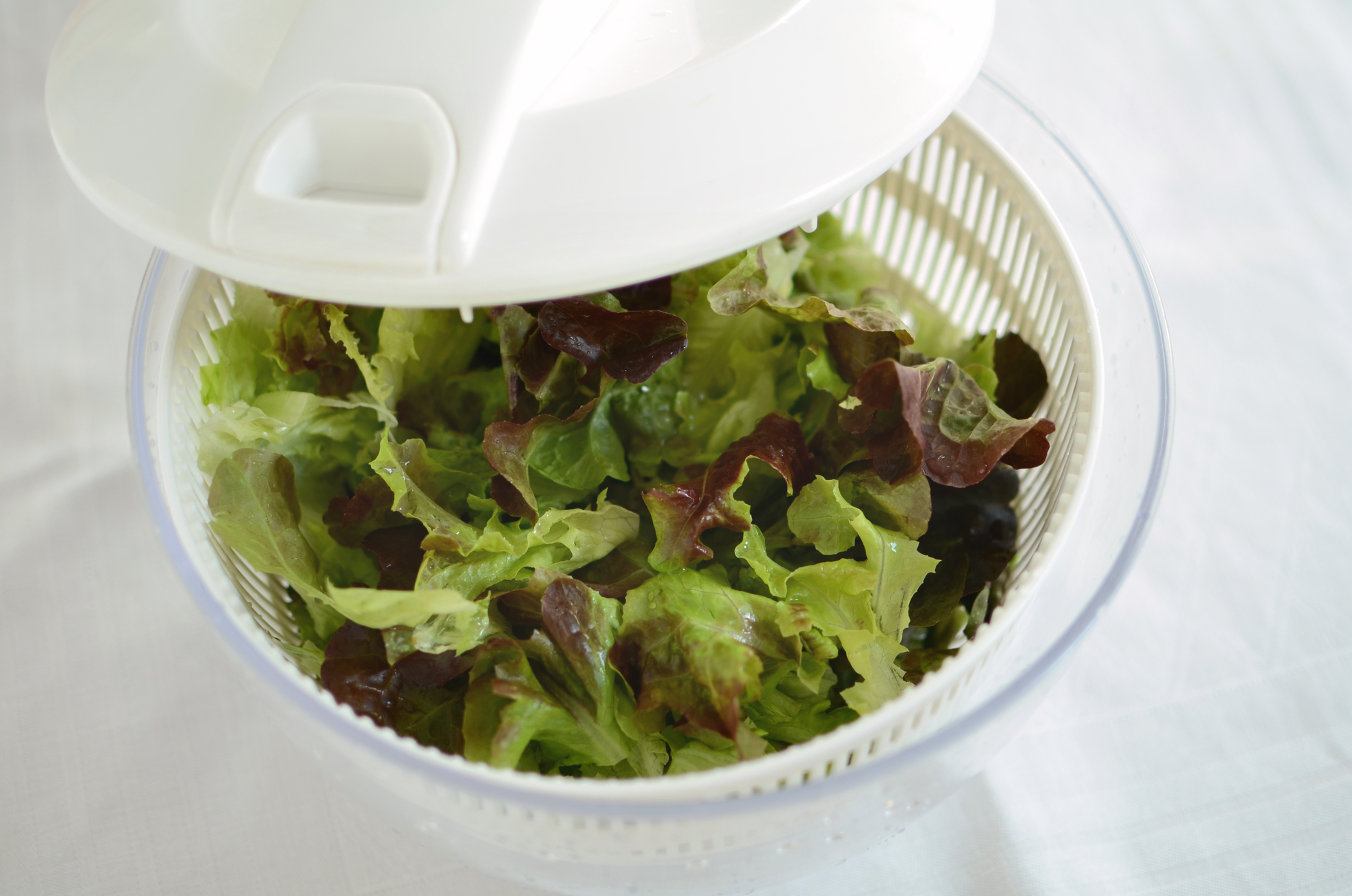 Salad Spinner for Removing Excess Moisture
