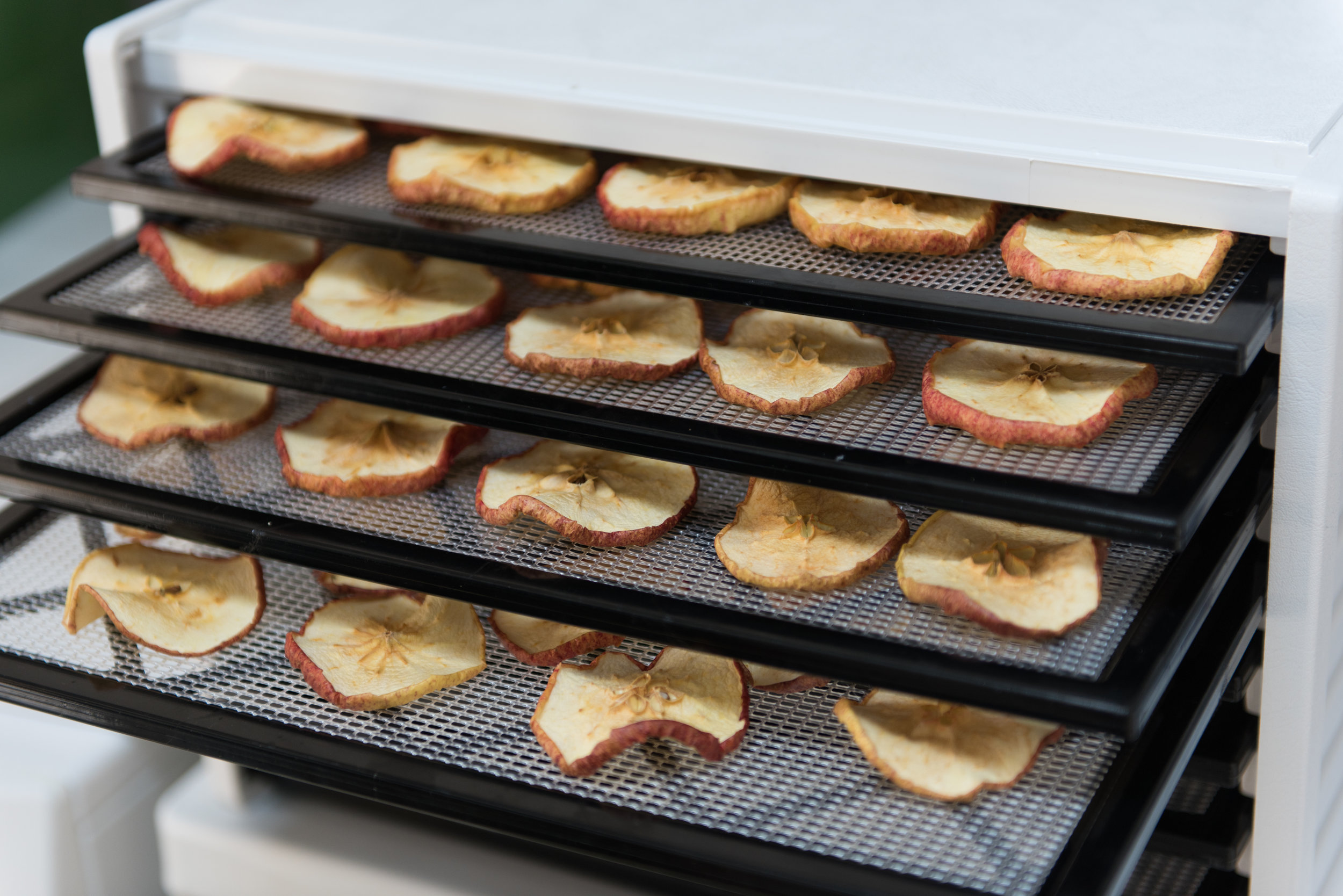 Dehydrating is done with many foods including fruits, vegetables, herbs, and meats
