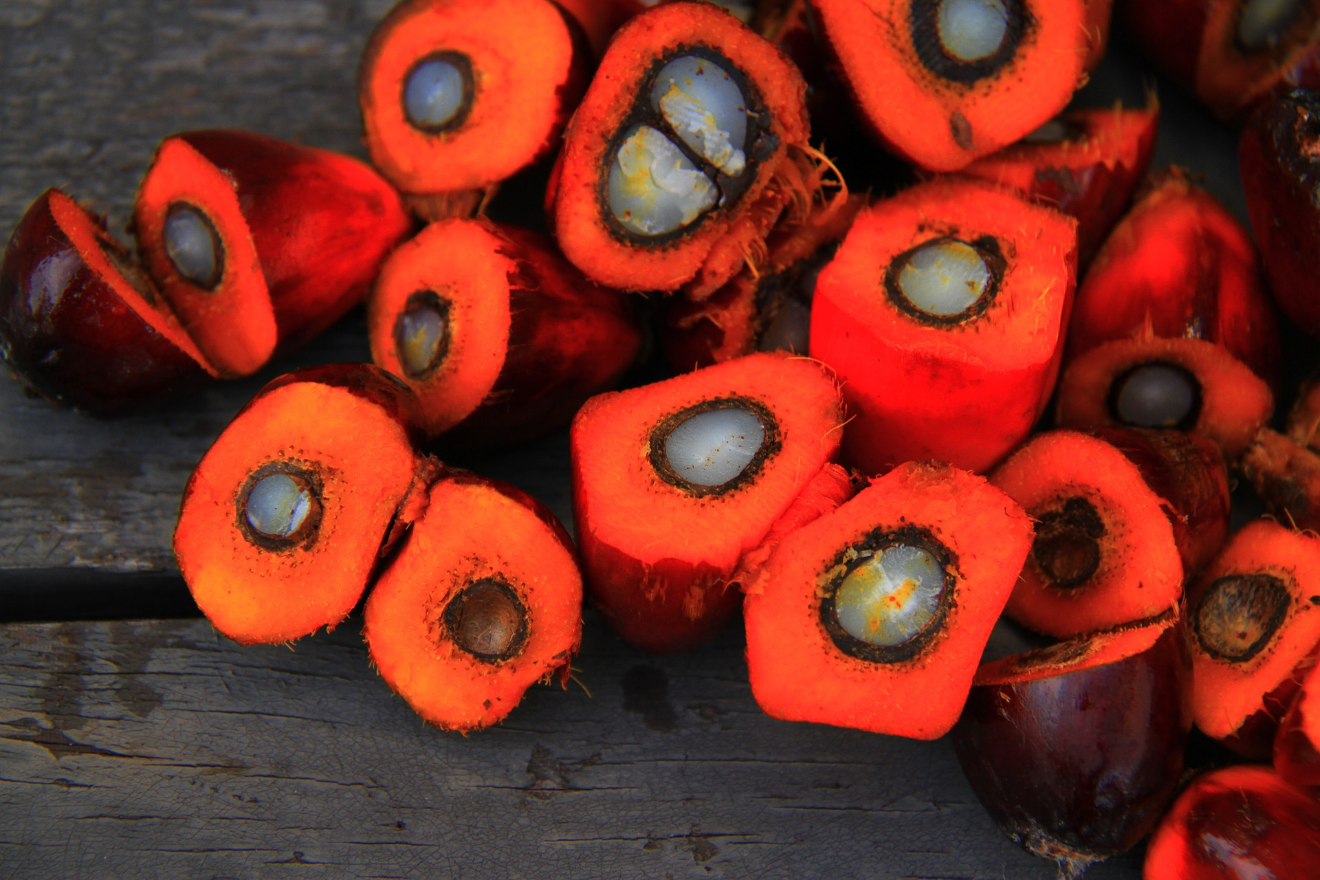 Palm Fruit Used for Dendê Oil Common in West Africa and Brazil