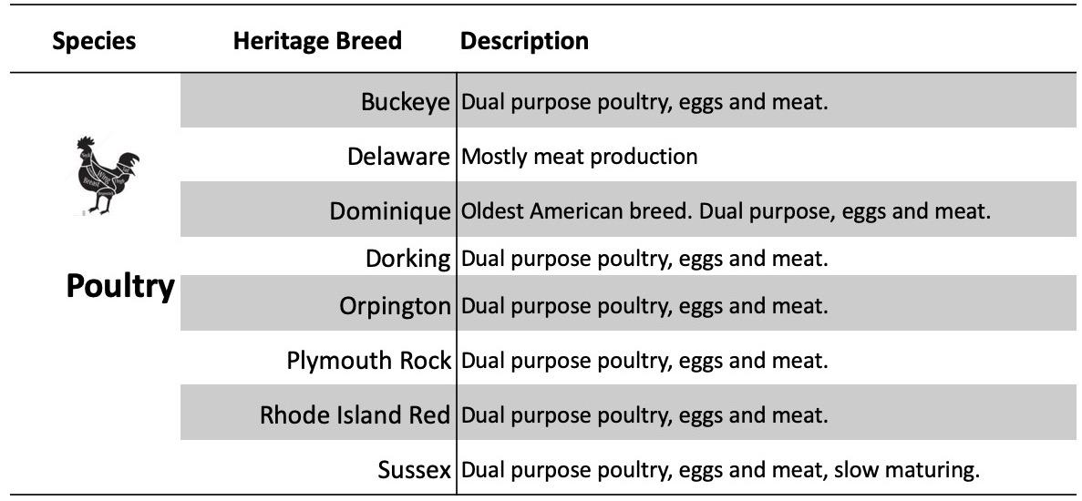 Poultry Breeds.jpg