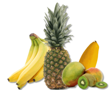 Fruits & Nuts -