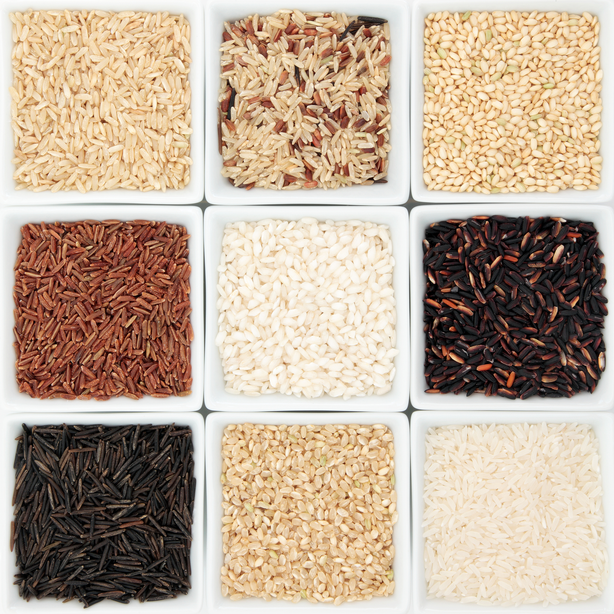 Rice Varieties -