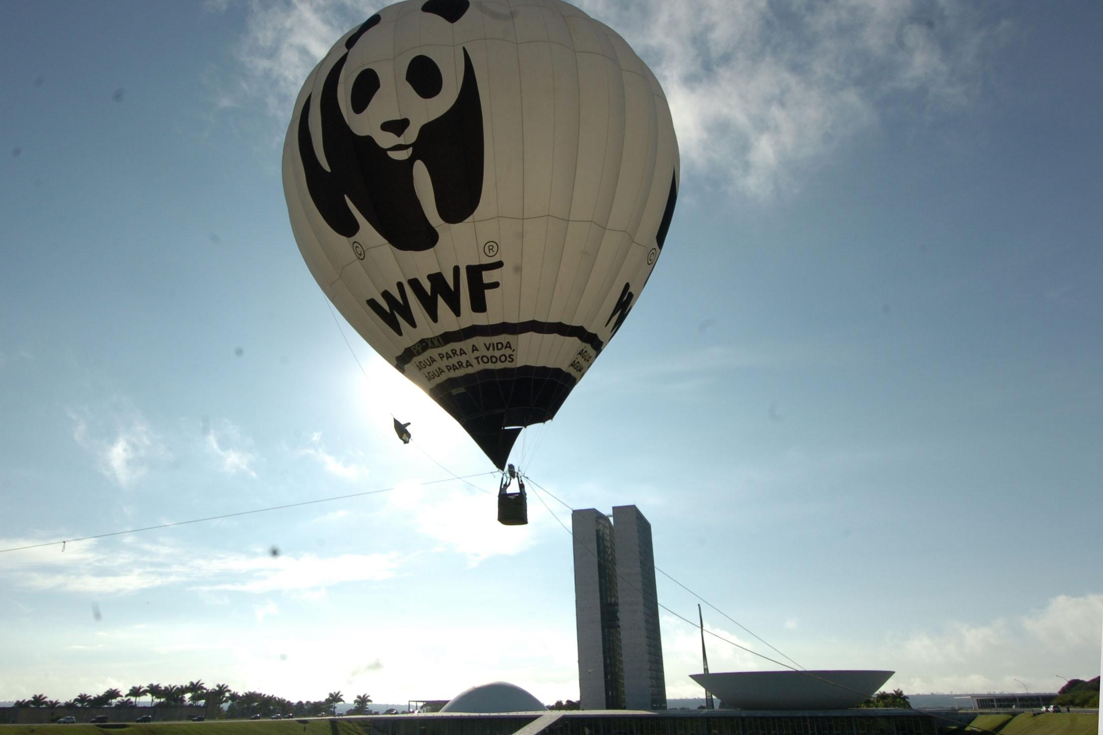 WWF baloon.jpg