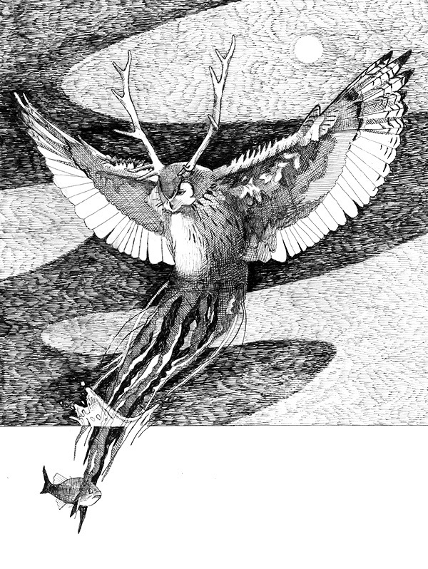 Elk, Owl, Jellyfish 2013, micron pen
