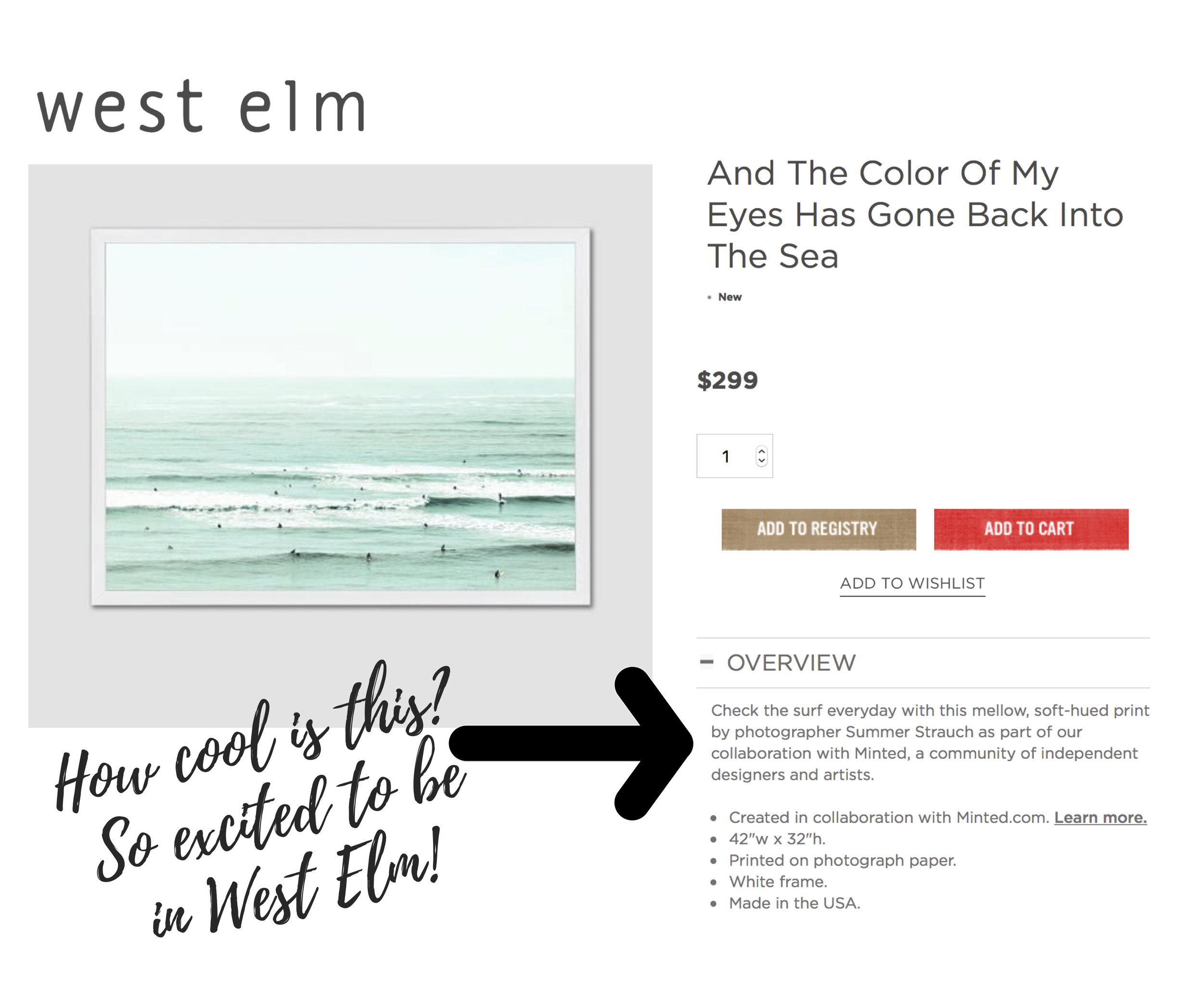 How cool is this? So excited to be in West Elm!.jpg