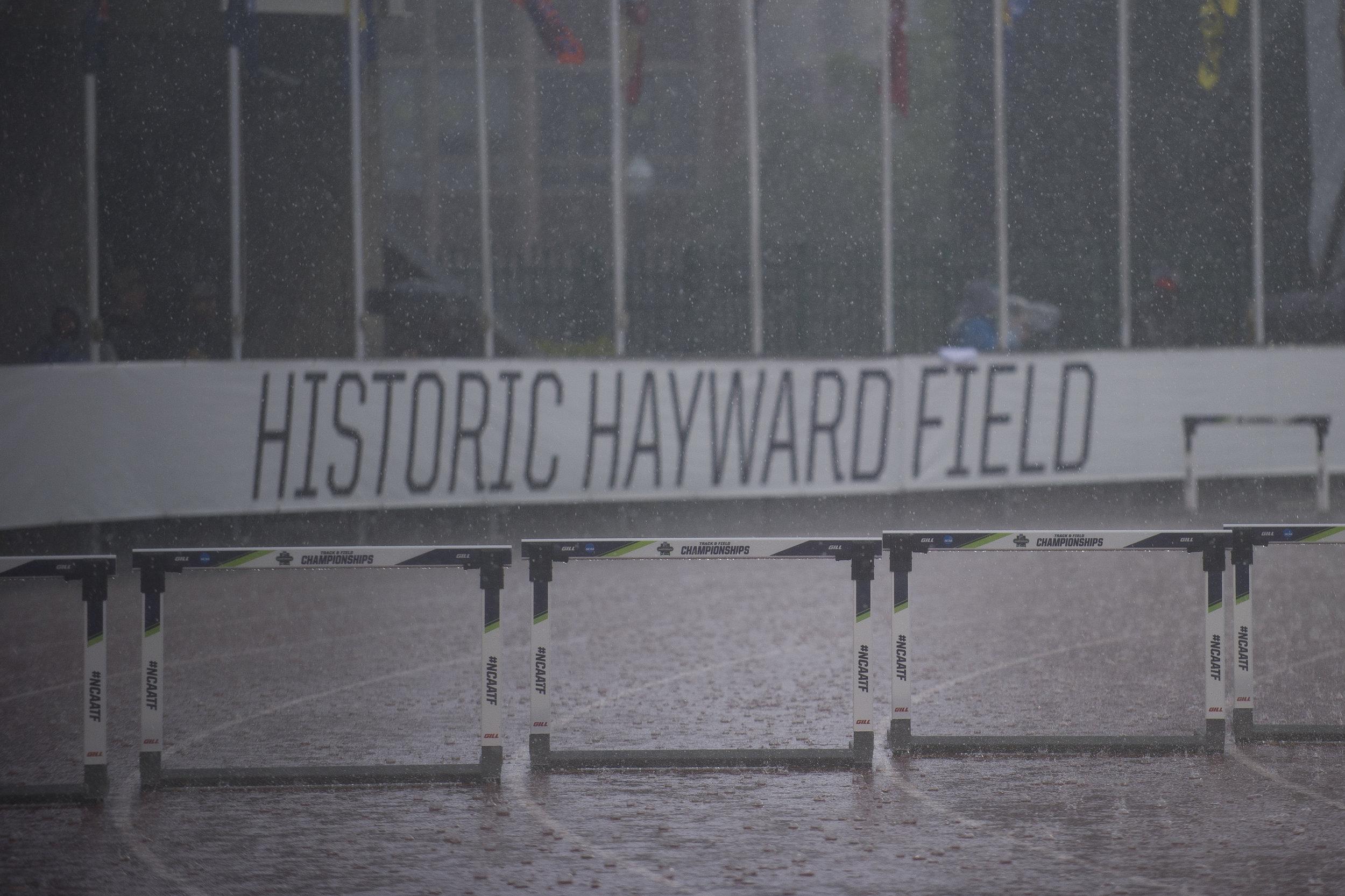 Hayward_2.jpg