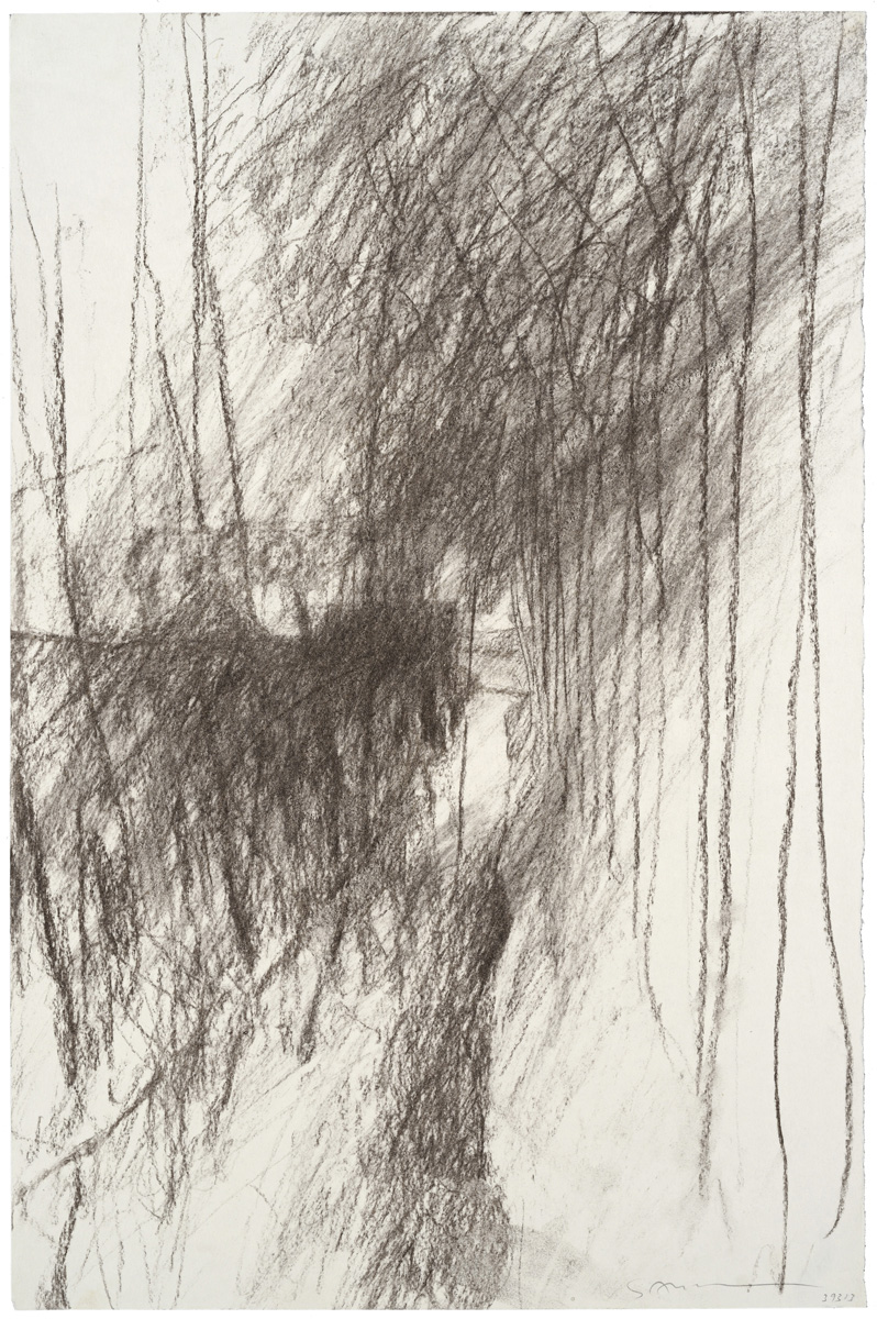 Canal d'auron, charcoal, 51 x 33 cm, 20 x 13 in, 1993