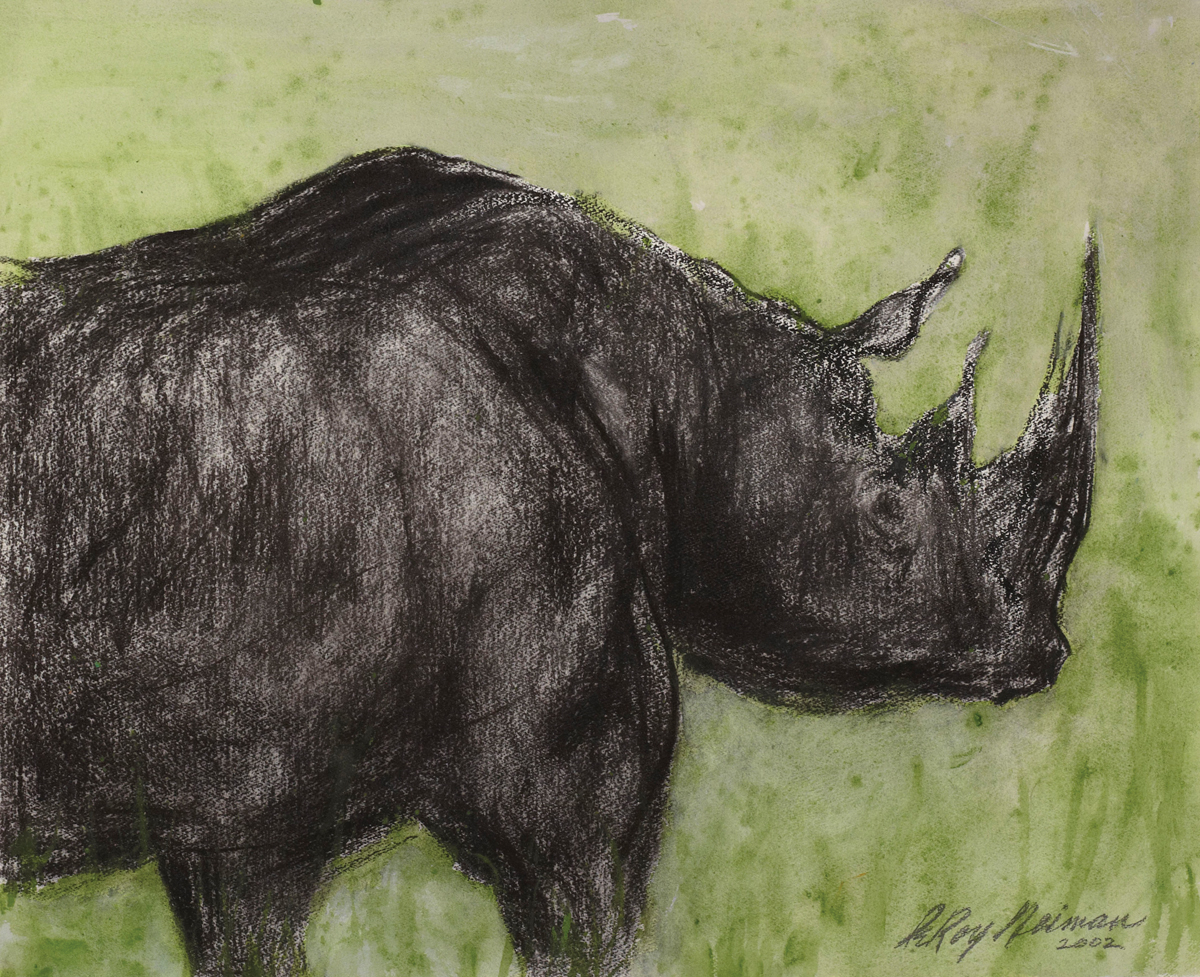 Rhino, Mixed Media on Paper, 30 x 36 in, 2002