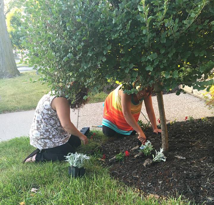 Paula-Damico-Plants-Gardening-Health-Wellness.jpg