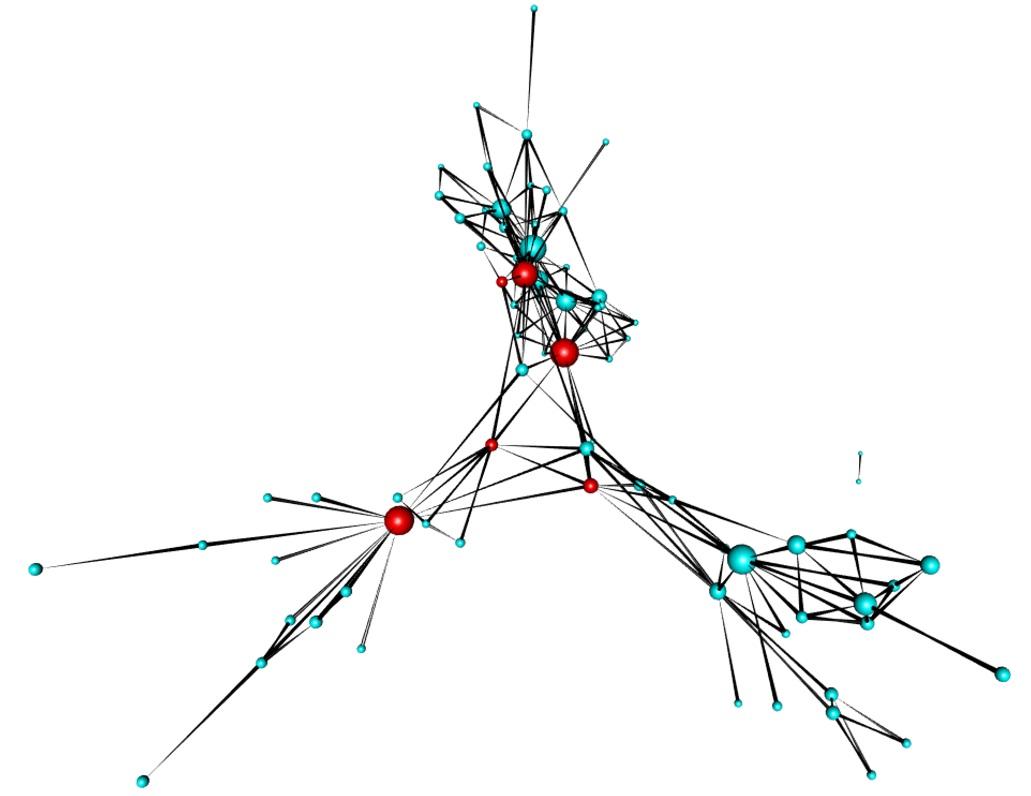 example_network.jpg