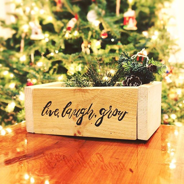 Just finished this custom planter. 🌱live, laugh, grow // Link in bio . . . . . . #christmas #holidayseason #christmasdecorations #christmasgift #christmasgiftidea #shoplocal #planter #planterboxes #calligraphy #flourishforum #ink #diy #custompresent #handmade #weddinginspo #weddinginspiration #handdrawntype #calligraphyquote #shopsmall #smallbusiness #inspirationalquotes #inspire #woodland #basil #giftbox #flashesofdelight #thatsdarling