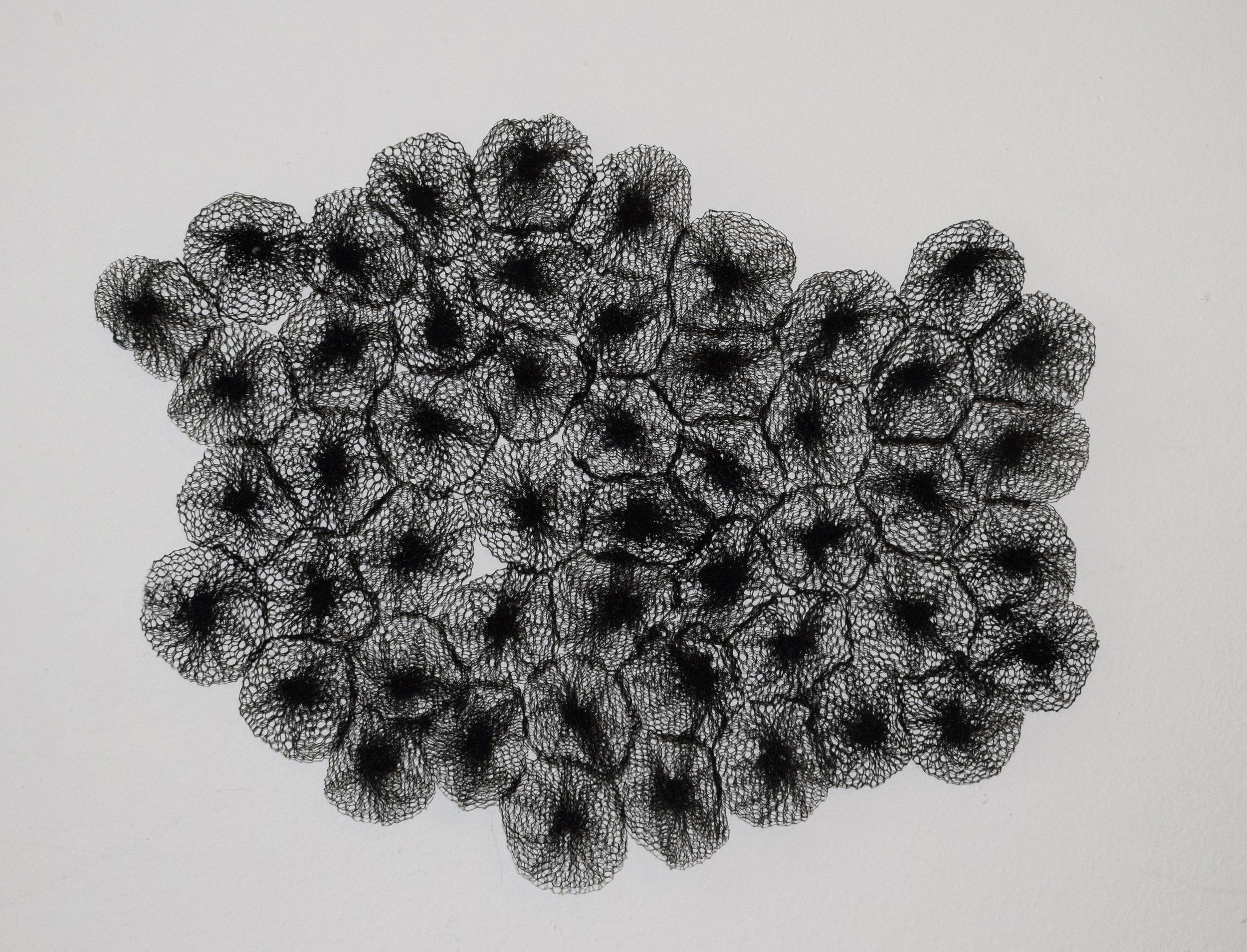 Metamorphosis  Polyester mesh, thread