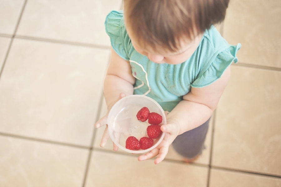 Baby and toddler food supplies