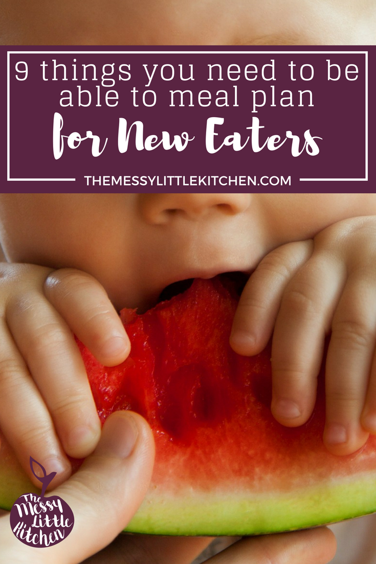 Baby Food Supplies: 9 Things You Need to be Able to Meal Plan for Your New Eater! If you're wondering what is the best way to make homemade baby food, you might be surprised how short the list is compared to the overwhelming number of products out there on the market! This post recommends 9 thing you will end to have on hand to prepare & plan meals for your new eater. Click through to read more. Follow me on Facebook, Instagram and Twitter to get sneak peeks of projects I'm working on.
