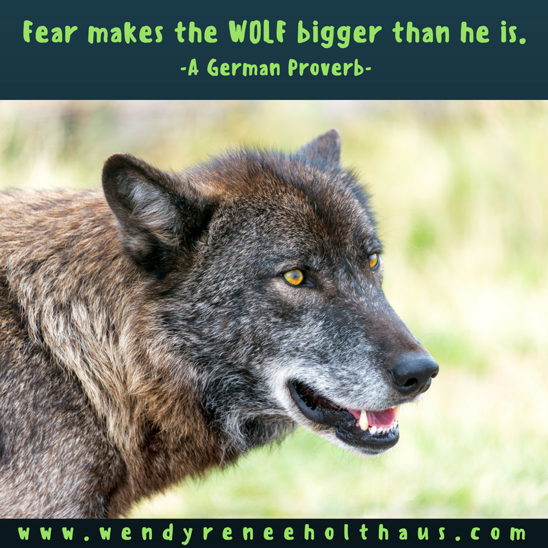 10-28-16 quote fear makes the wolf bigger (1).png