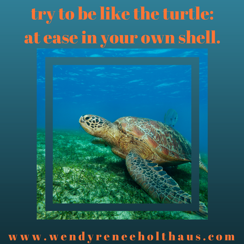 12_29_16 quote try to be like a turtle_at ease in your own shell.png
