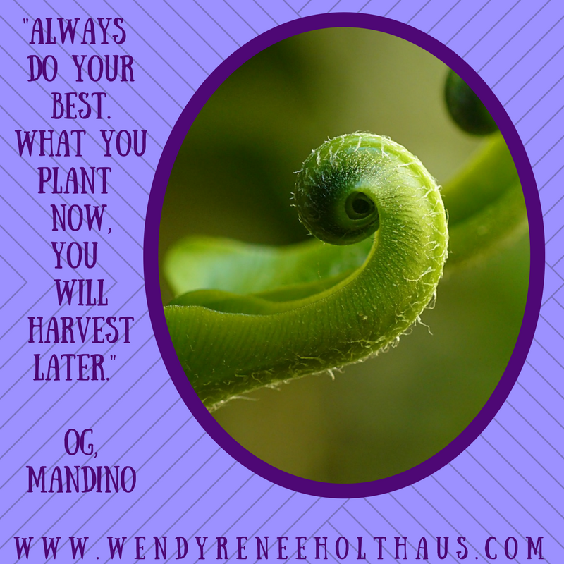 1_26_17 quote Always do yourbest.what youplant now,you willharvestlater. og, mandino.png