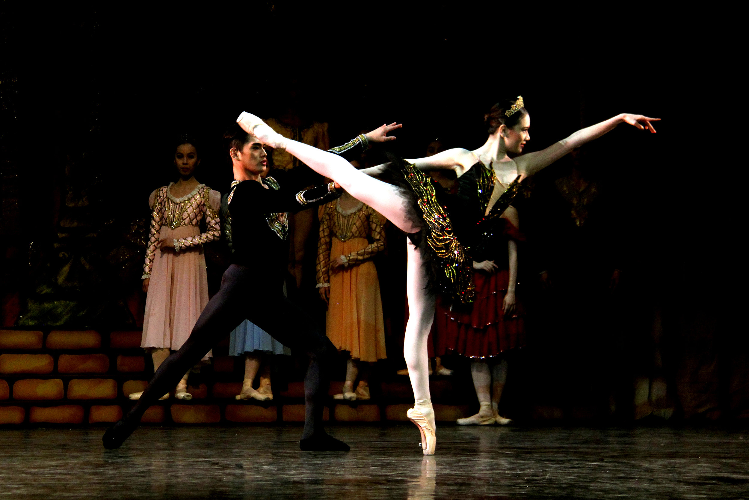 Abi performs as the cunning Odile, the Black Swan, in a full-length production of    Swan Lake    in 2014.