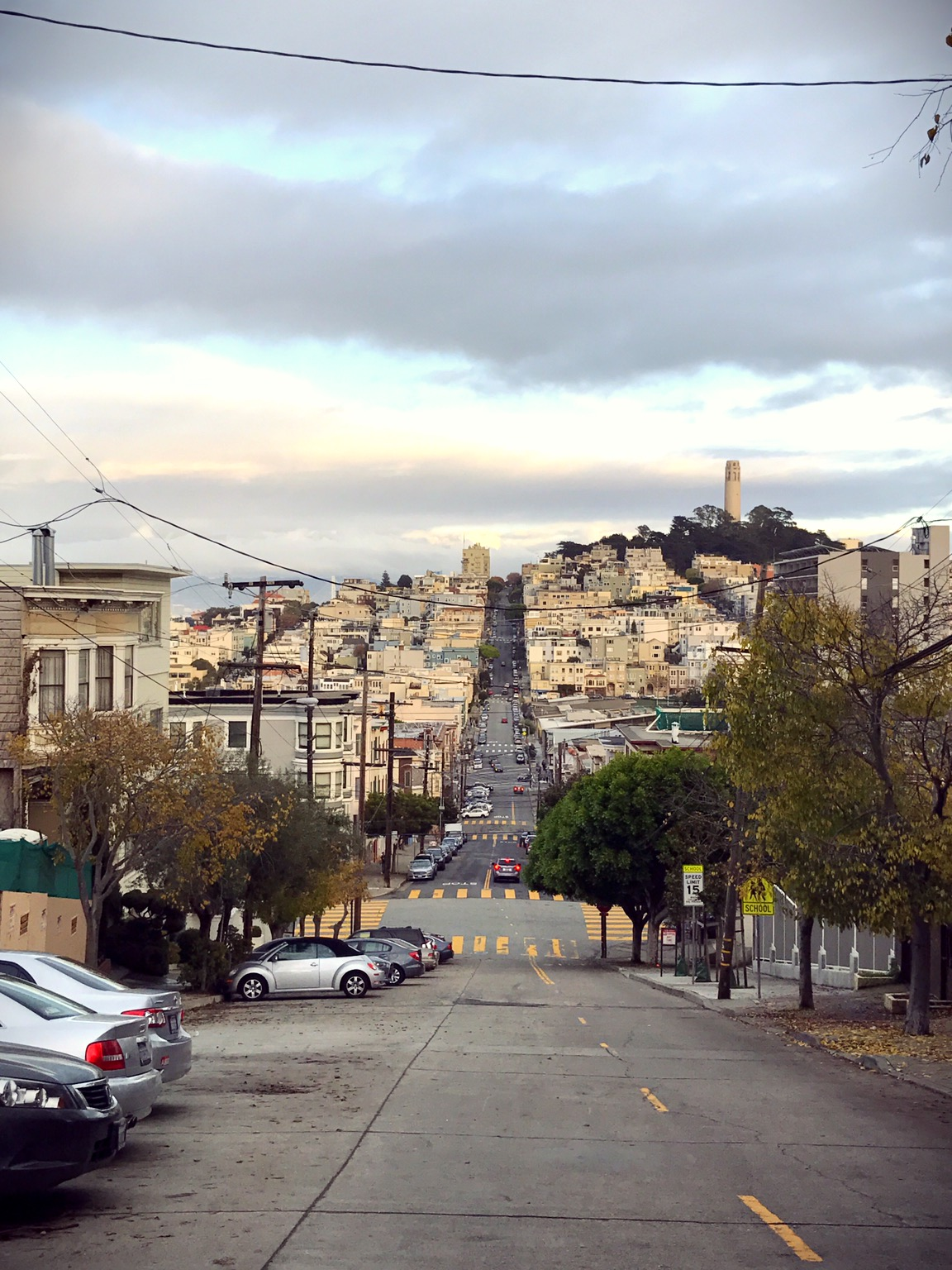 The view from Lombard Street. The streets of San Francisco are typically tilted and steep like this.