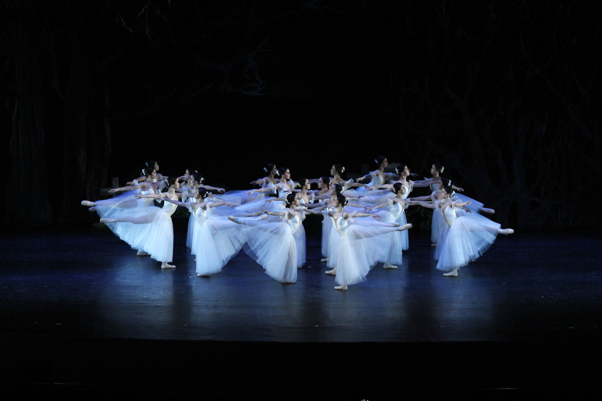 "The female corps de ballet as the vengeful wilis in the 2012 staging of ""Giselle"""