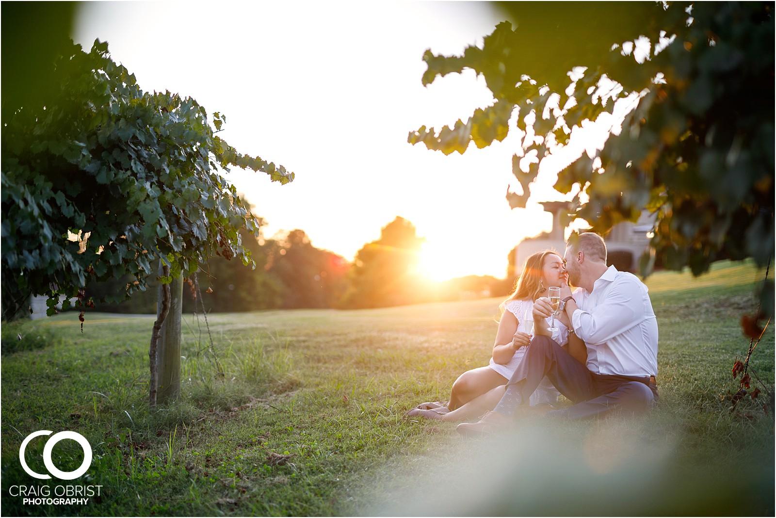 Chateau Elan Winery Surprise Engagement Portraits_0021.jpg
