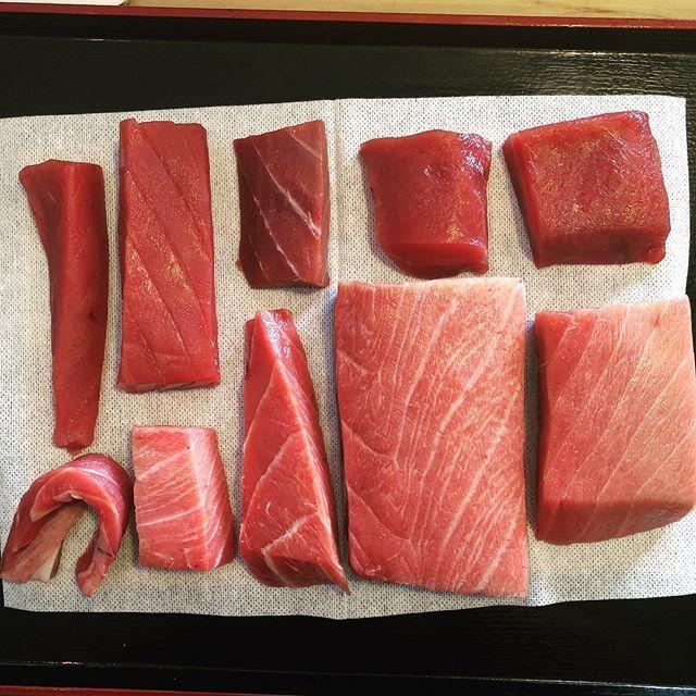 Maguro Sensei  #maguro #honmaguro #tuna #atonyc #ato #fattytuna #sashimi #sushi #omakase #spring #beautiful #gocavs