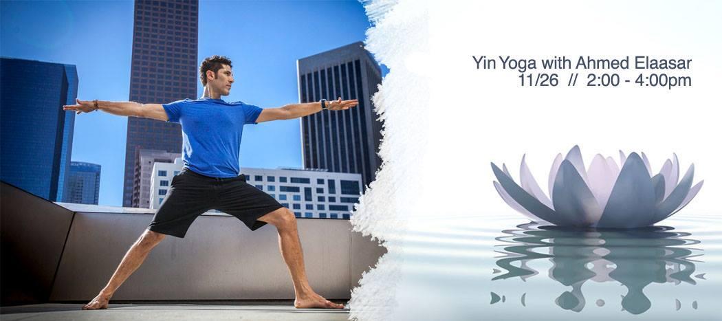Thrive Yin Workshop.jpg