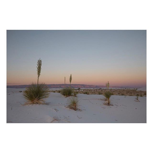 Some amazing landscapes exist only in New Mexico! Thank you @morgan.koble for showing us the beauty that is White Sands! If you haven't visited yet you need to #explorenm !