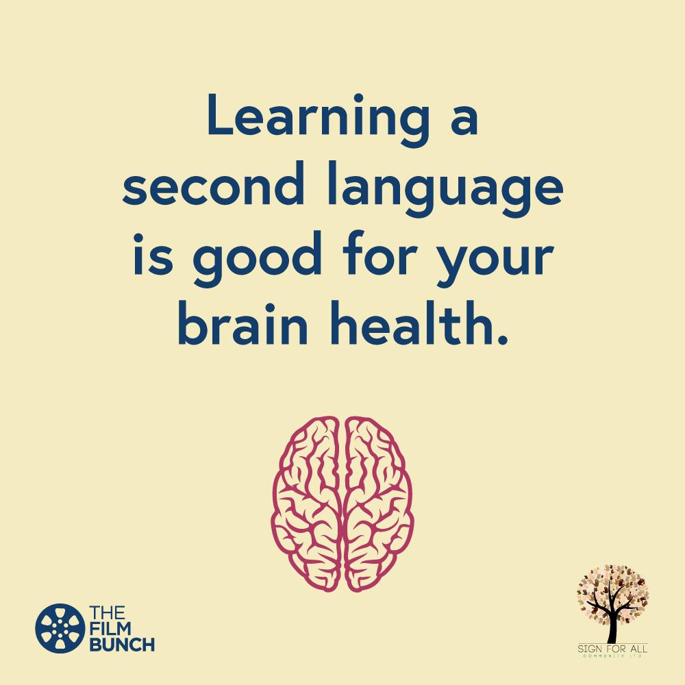 BSL-Brain-Language.png
