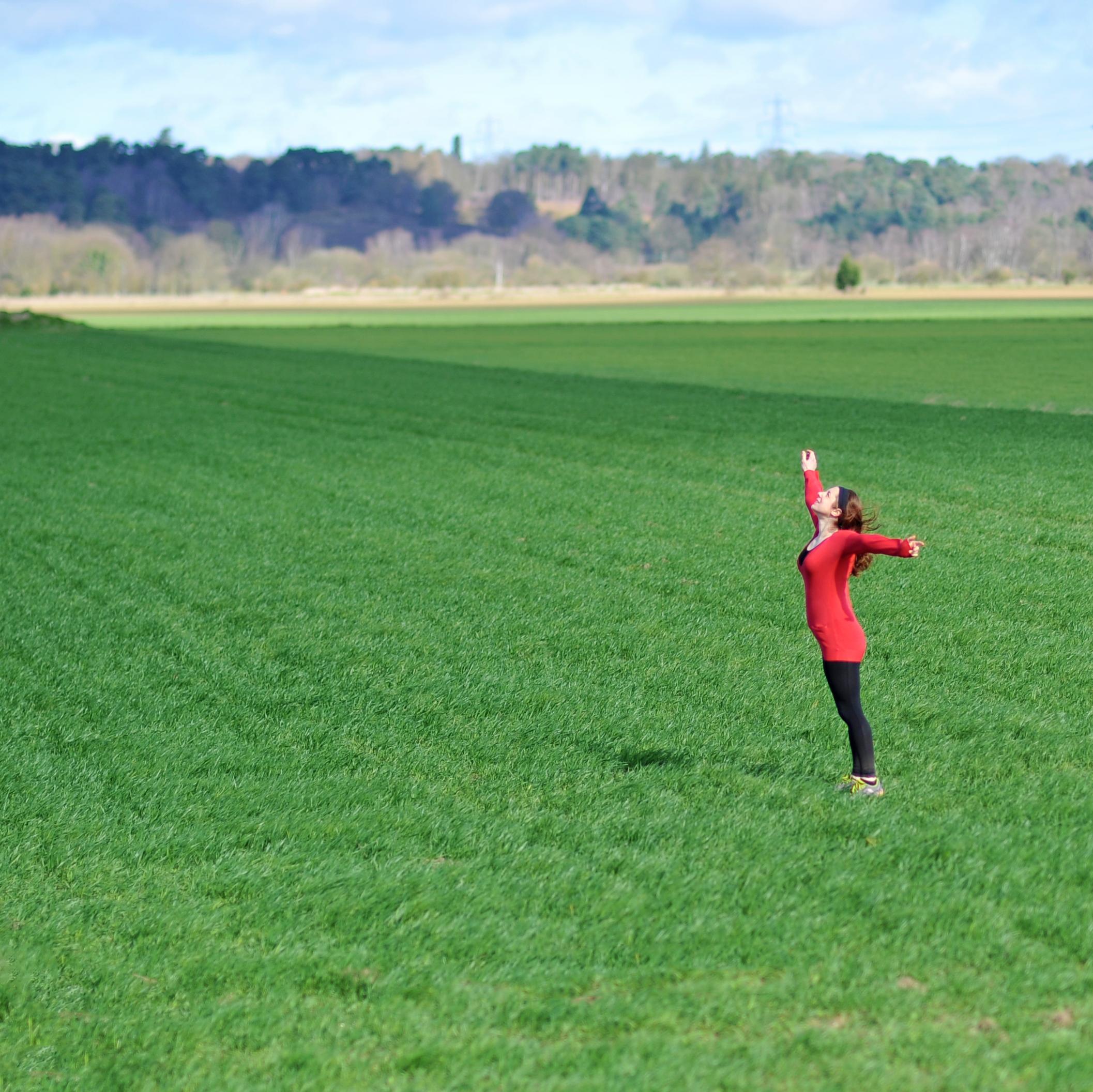 jo field 2.jpg