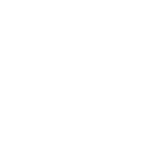 welltodo WHITE.png