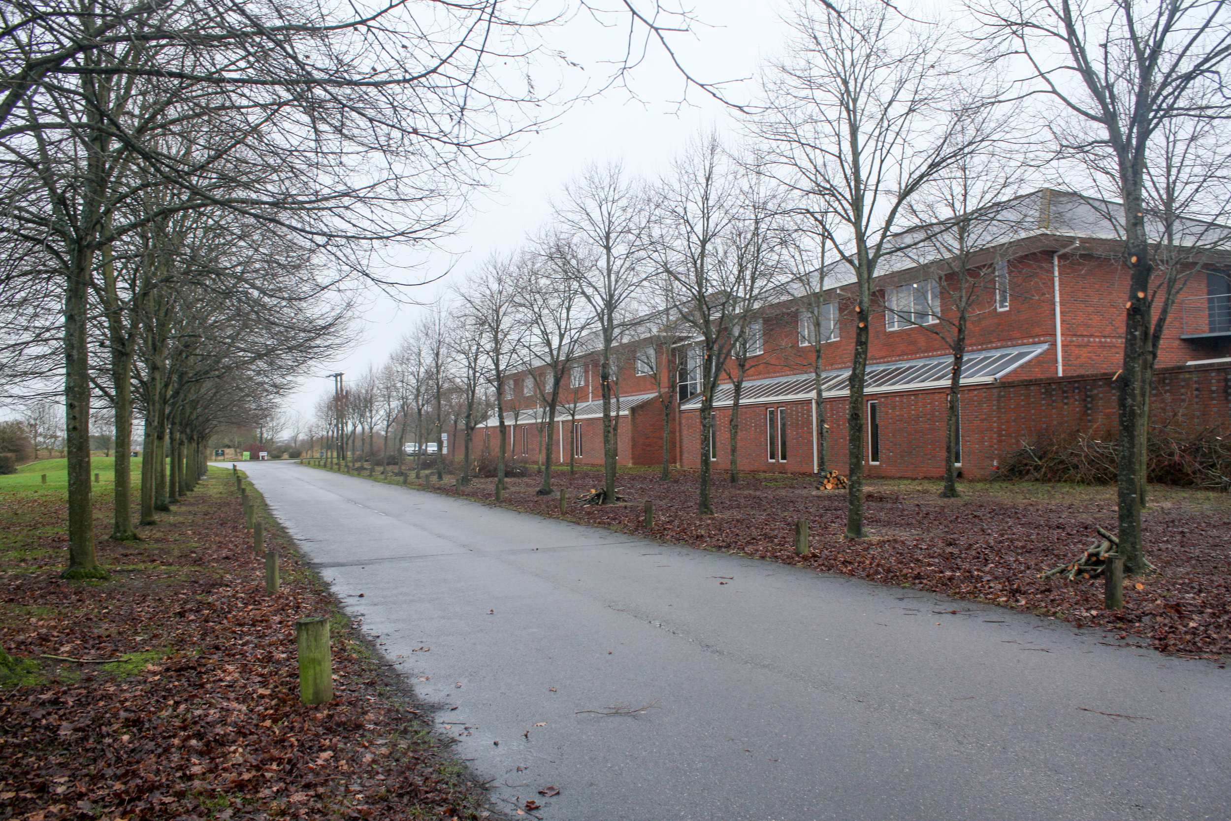 Taylors Tree Services - Cams Hall Estate
