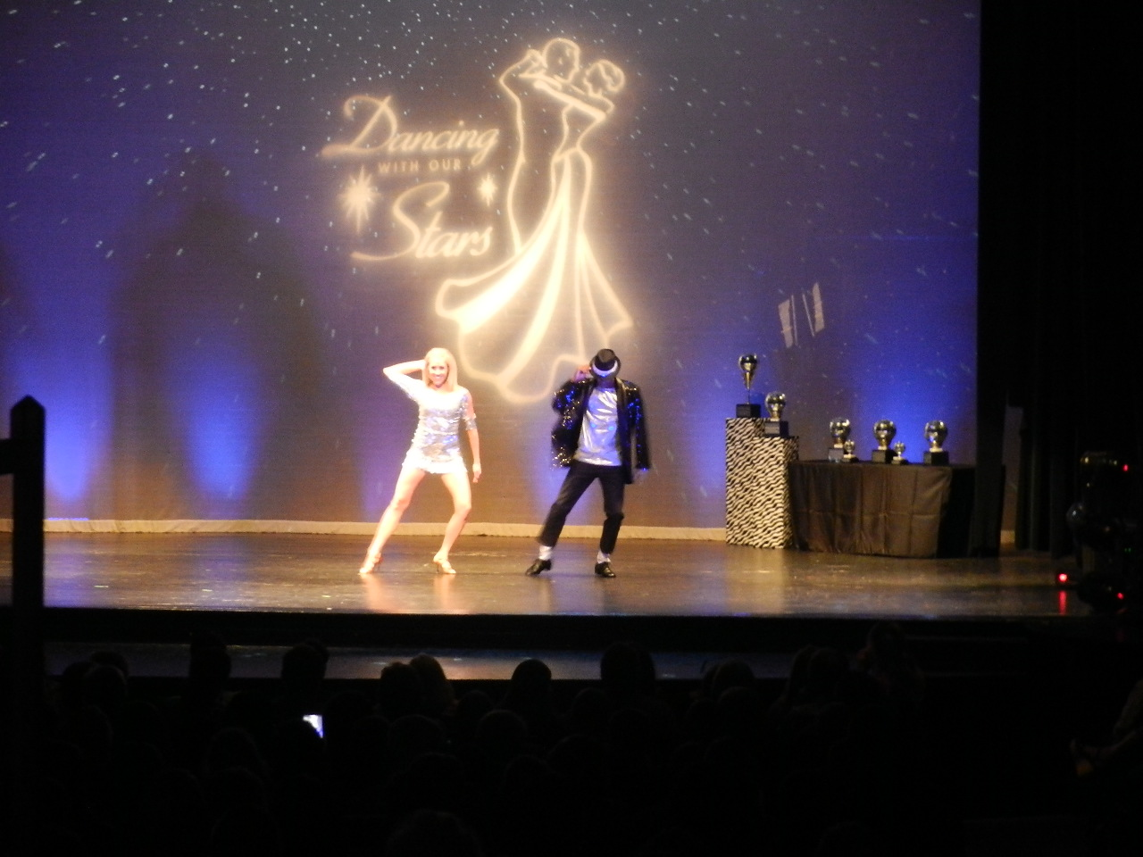 The event raised $65,000 for Sanctuary and the Arts Council