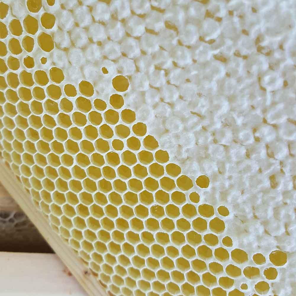 Honeycomb partly sealed