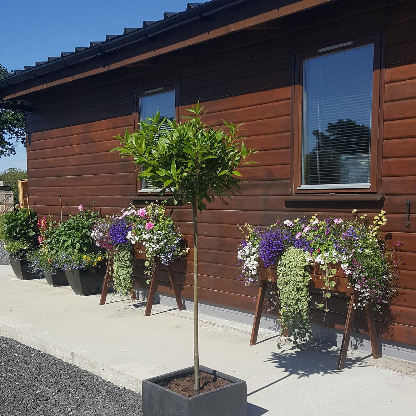 planters_flowers_distillery.jpg
