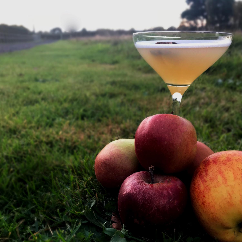 spiced-apple-martini