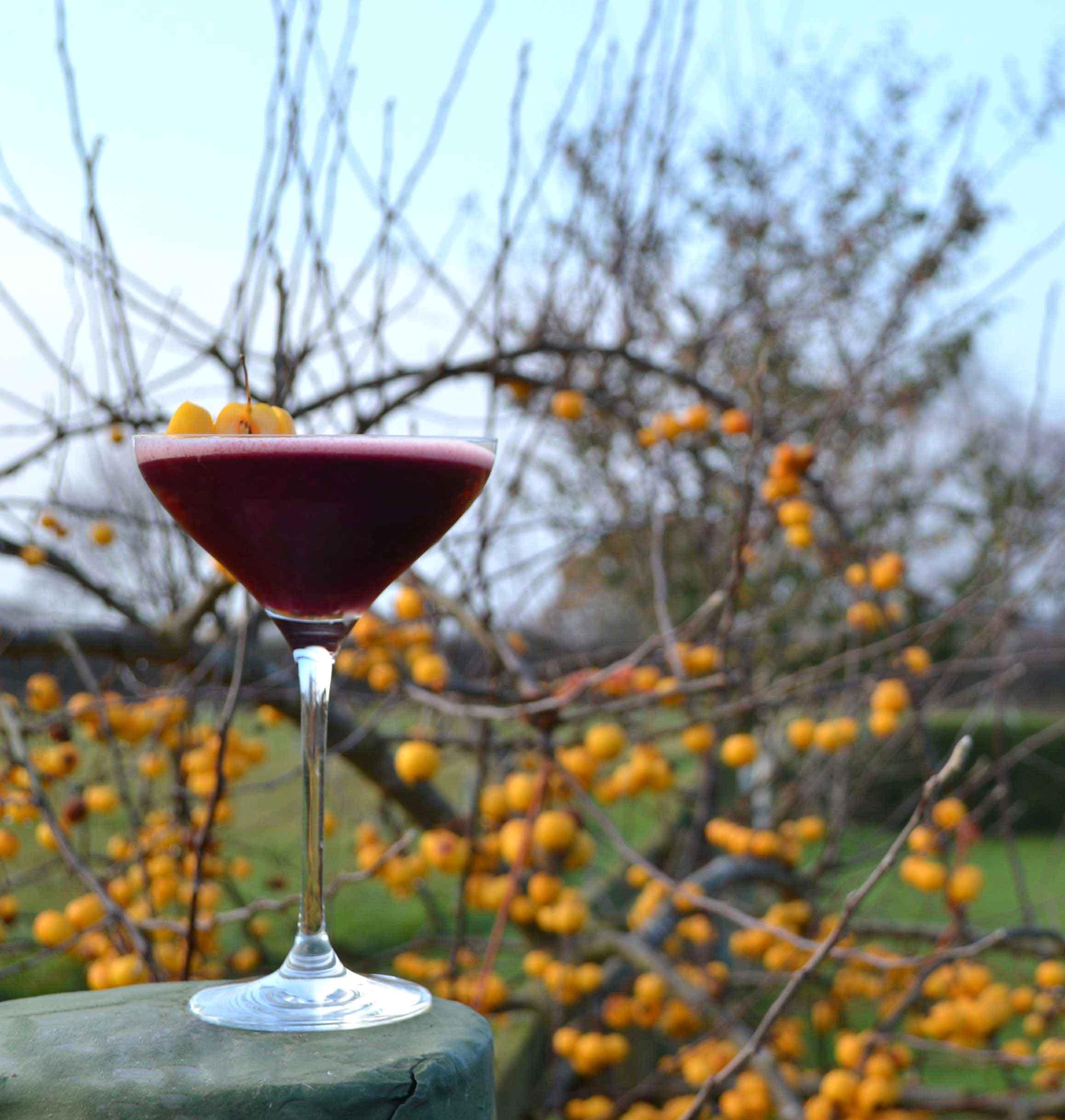winter-solstice-yorkshire-gin-cocktail.jpg