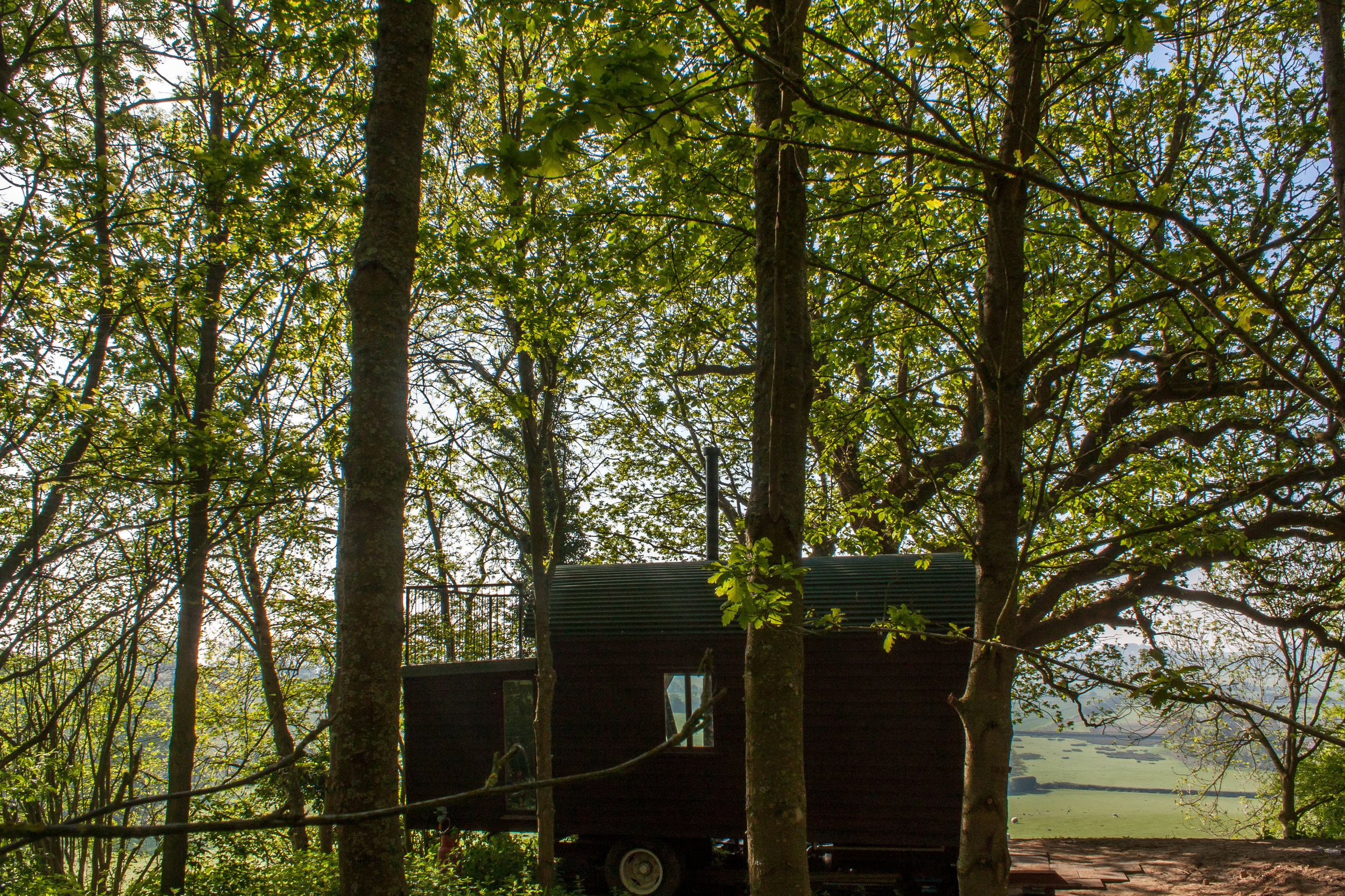 Shepherds Hut Woodland Rye East Sussex