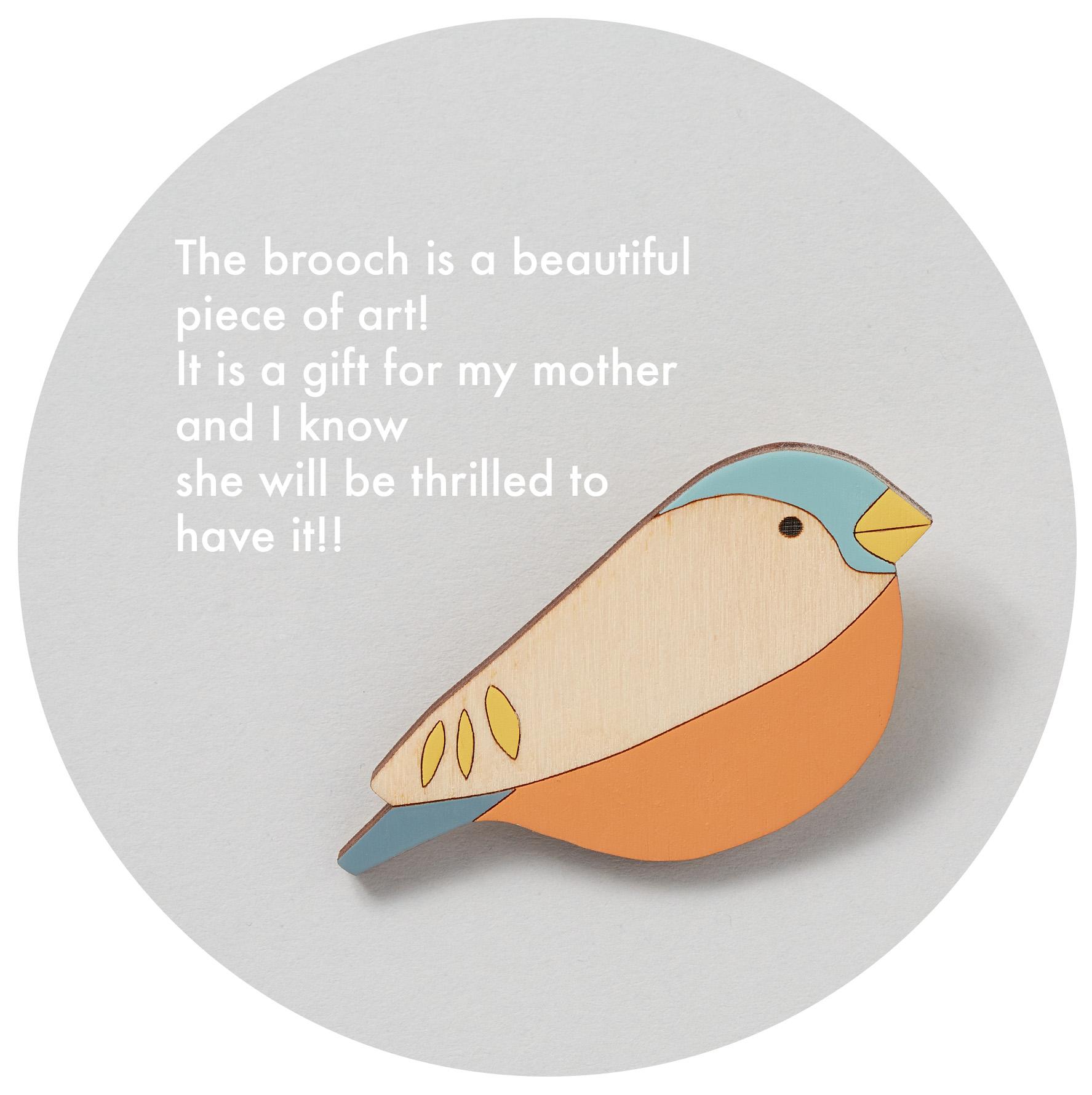 bullfinch-brooch.jpg