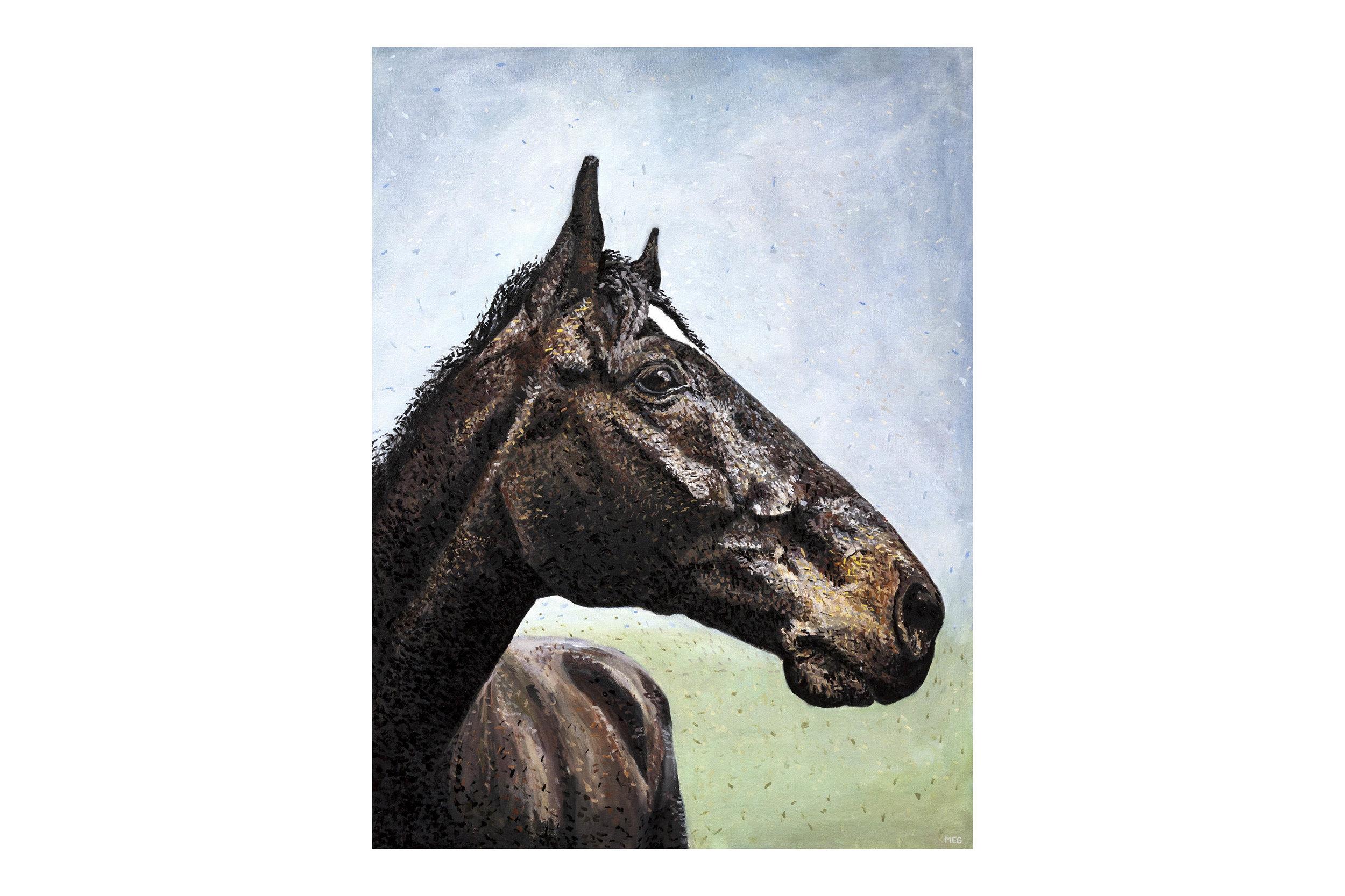 MegKlondike-HorsePainting12.jpg