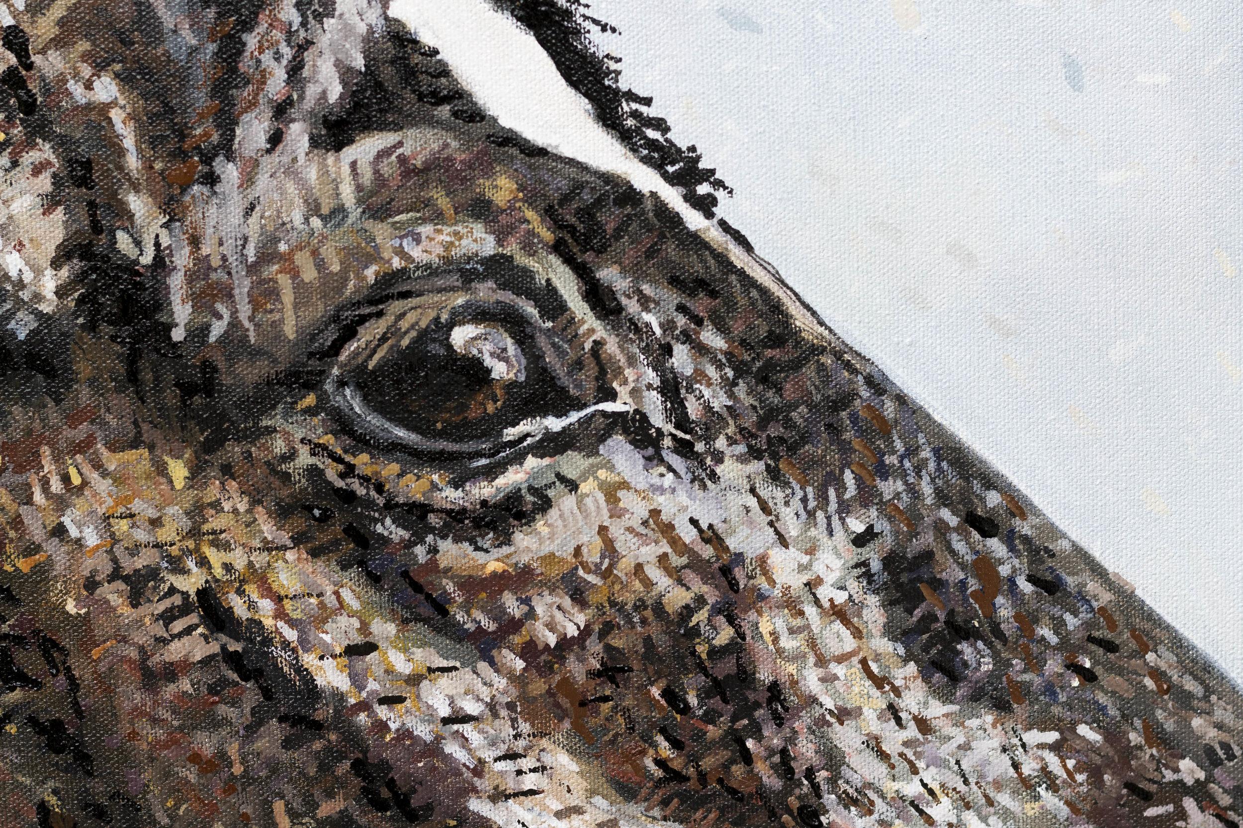 MegKlondike-HorsePainting13.jpg