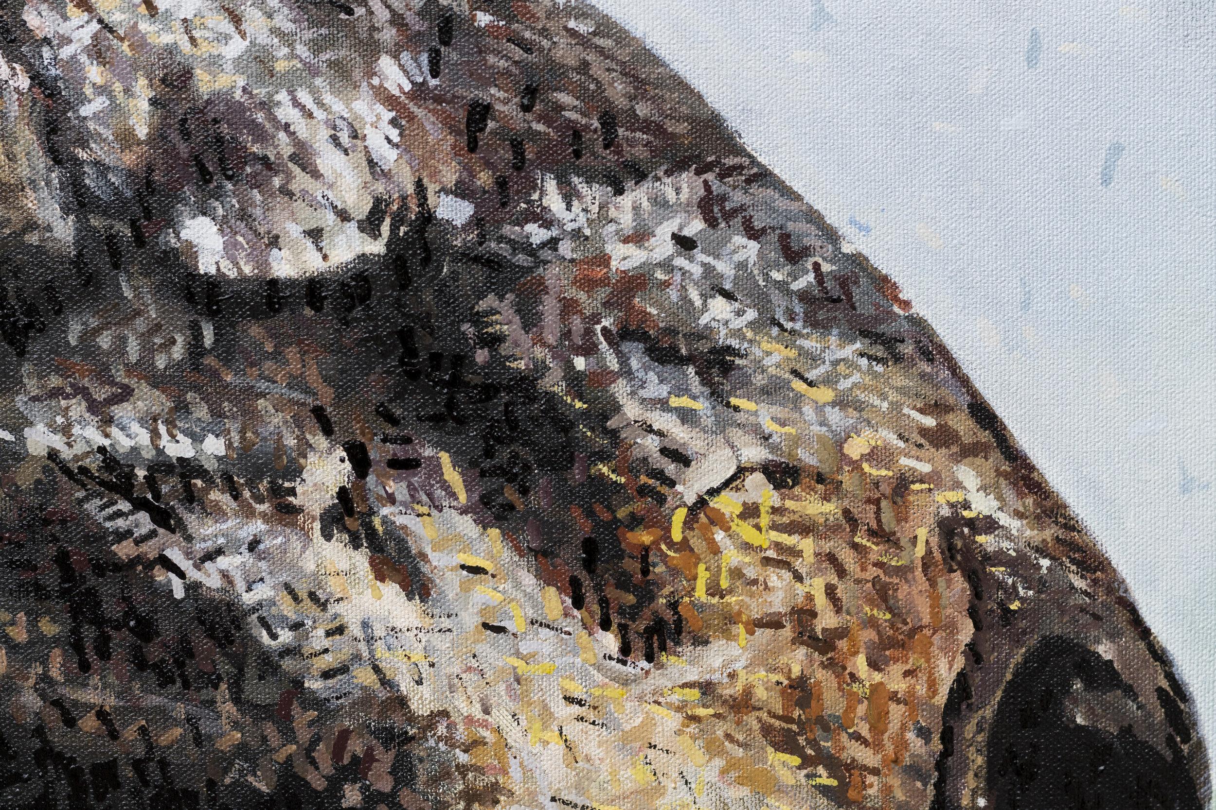 MegKlondike-HorsePainting6.jpg