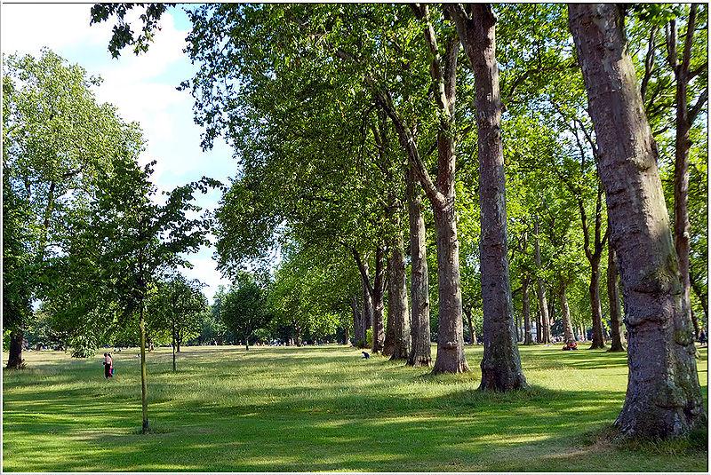 5. Hyde Park