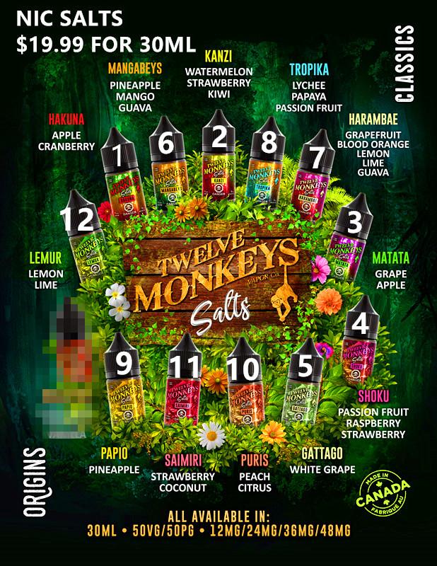 12 Monkeys Salts Flavour Menu - 8.5x11.jpg