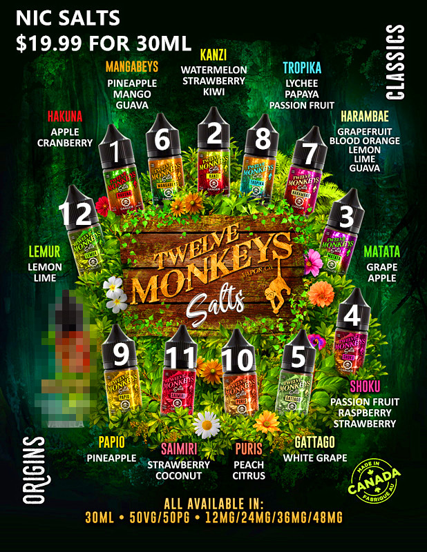 12 Monkeys Salts Flavour Menu - 8.5x11.jpg